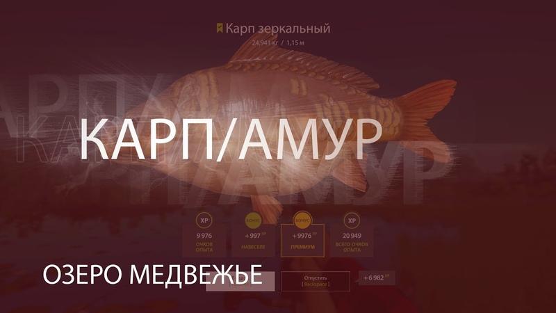 Русская рыбалка 4 Russian Fishing 4 🔴Озеро Медвежье Карп Амур🔴