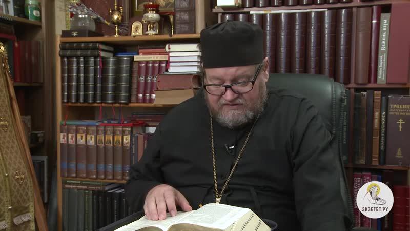 Деяния Святых Апостолов Глава 9 Протоиерей Олег Стеняев толкование