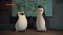 Мультфильм Пингвины из Мадагаскара - 3 сезон 17 серия HD