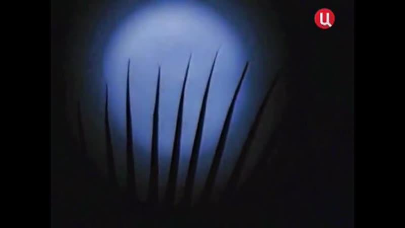 Подводная одиссея Жак Ив Кусто 101995 Освещая глубины