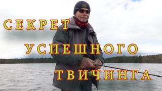 Константин Кузьмин. Секрет успешного твичинга.
