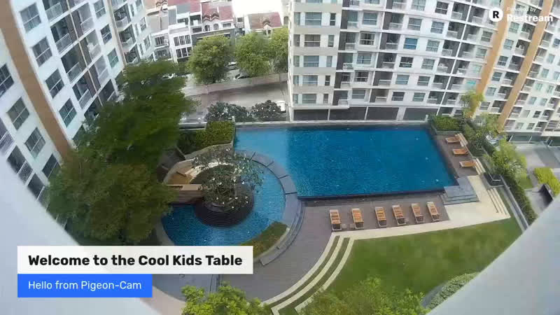 LIVE Domestic Tourist in Thailand Where To Travel Next coolKidsTable