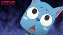 Хвост Феи Приколы $1 Fairy Tail Crack $1