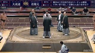 Sumo LIVE Stream – July, 2020 - Day 8