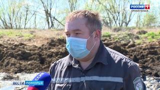 Сгнившие трупы животных в километре от посёлка Луговой обнаружили специалисты Россельхознадзора