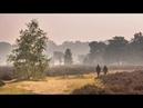 Park Berkenrhode - Last minute Veluwe