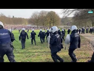 Ter Kamerenbos (Brussels) changes into a war zone as riot police breakup gathering with 5000+ youth