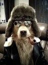 Личный фотоальбом Ольги Громовой