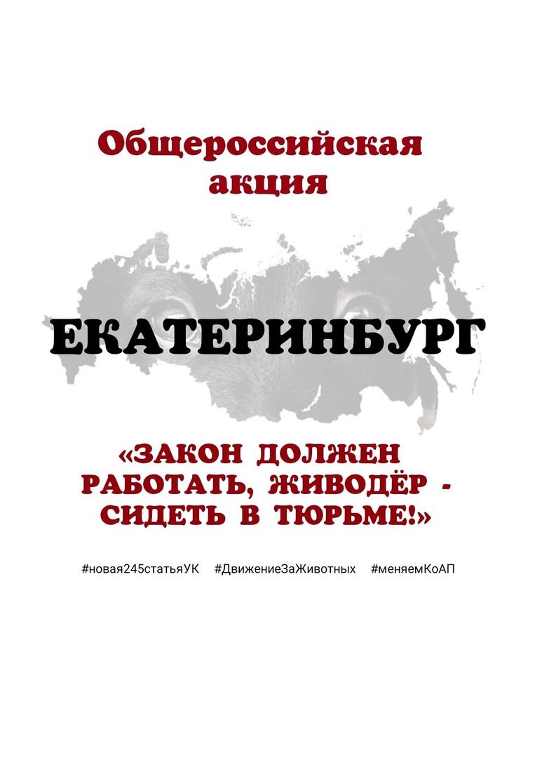 Афиша Екатеринбург ЕКАТЕРИНБУРГ. Закон должен работать-живодер сиде