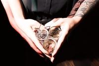 При правильном и умеренном употреблении многие алкогольные напитки способны приносить большую пользу организму