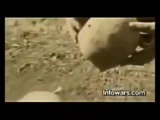 Zensiertes Video von Alex