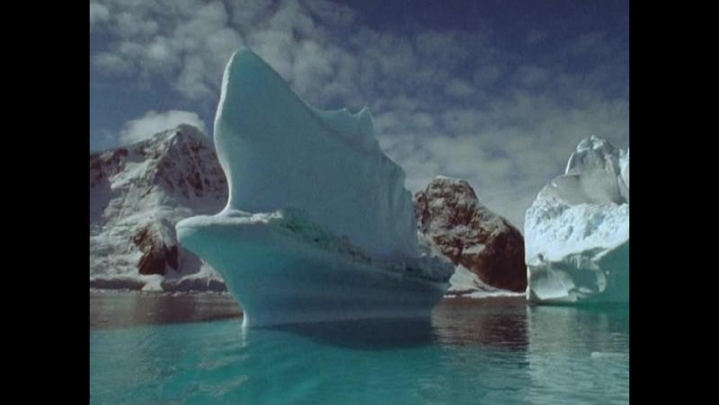 BBC Голубая планета Фильм четвертый Замёрзшие моря