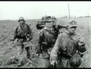 Stahlgewitter Ruhm und Ehre der Waffen SS