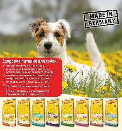 Royal Canin Renal Special Feline - купить по выгодной цене