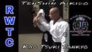 Sankyo wrist lock - TenShin Aikido takingaikidoback
