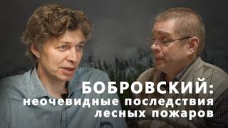 Как пожары влияют на почвы и лесные экосистемы (интервью с почвоведом Максимом Бобровским)