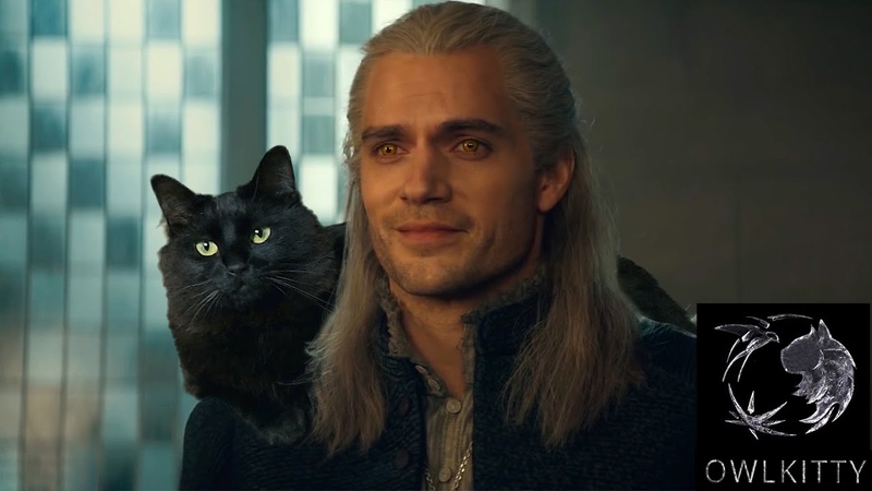 If Geralt had a Cat OwlKitty Witcher