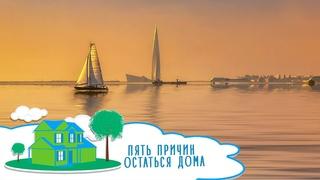 Отдых на Финском заливе: творческие дачи и гонки на квадроциклах | Пять причин остаться дома