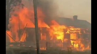 Лесные пожары в Карелии: горят поселки, идёт эвакуация #Karelia #Russia #forestfire