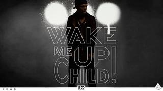 Swedish House Mafia vs. Avicii - Don't You Worry Child vs. Wake Me up (Axwell /\ Ingrosso Mashup)