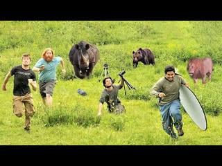 20 Times Wild Animals Surprised Photographers