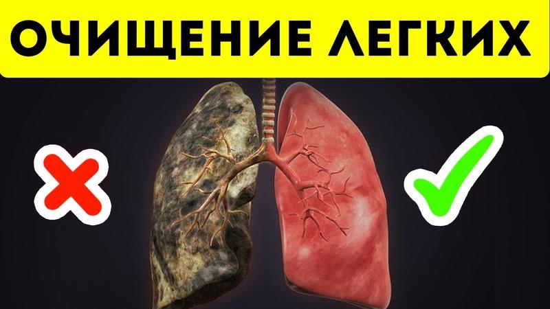 Мощнейшая чистка легких от смол никотина и токсинов