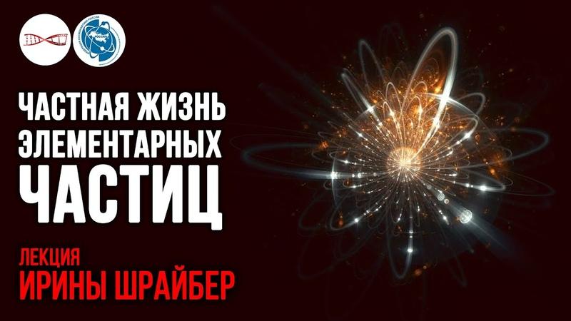Частная жизнь элементарных частиц. Ирина Шрайбер