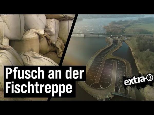 Realer Irrsinn: Pfusch an der Fischtreppe in Geesthacht   extra 3   NDR