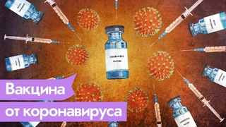 Что известно о Спутнике V и других вакцинах от коронавируса / Максим Кац