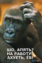 Фотоальбом Евгения Демьянова