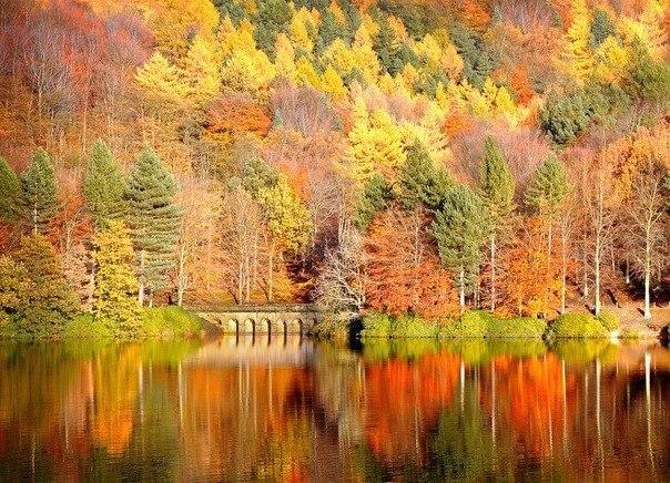 Обои Рабочего Стола Большие Осень