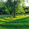 Садоводство Ландшафтный дизайн  Пермакультура