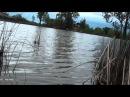 Pescuit caras la balta Gliganu de Sus 28 04 2015
