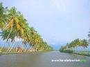 Kumarakom Backwaters Kottayam