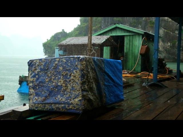 Вьетнам Халонг 14 выпуск 1080p HD Мир Наизнанку