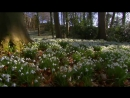 BBC Британские времена года 2013 HD 720 1 серия