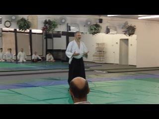 Push Hands Aikido 1