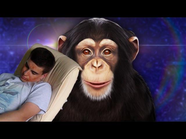 МАЛЕНЬКАЯ УБИЙЦА |chimbot