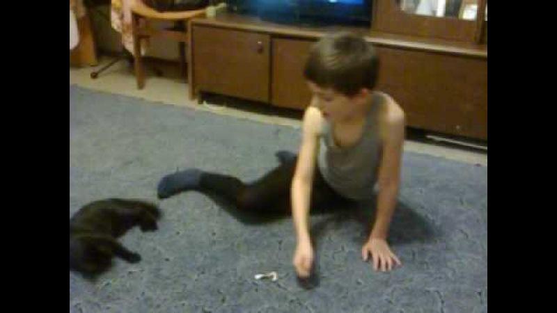 Кошка Ася прыгает за бантиком Веселое видео