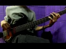 RATM - Know your enemy (Zlatoyar bass cover)