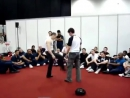 Tommy Carruthers Jeet Kune Do Demonstration From The Seni 2008 London [Low, 480x360]