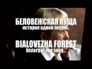 ДИМАШ DIMASH Беловежская Пуща Bialovezha Forest История песни Song's history