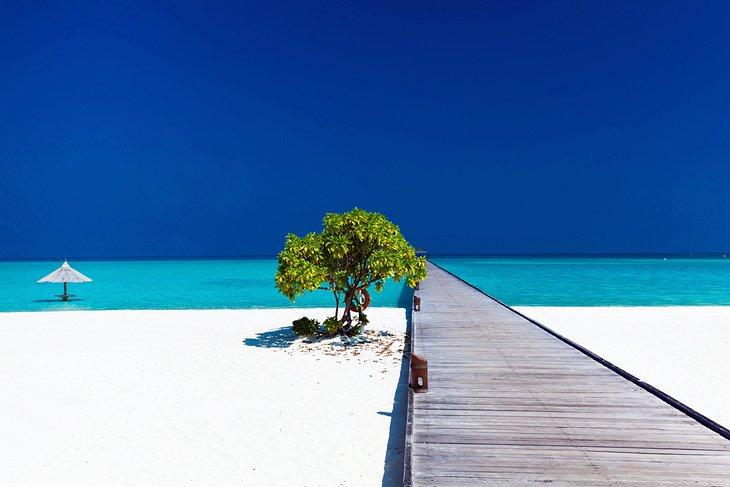 Топ 5 лучших тропических курортов, изображение №3