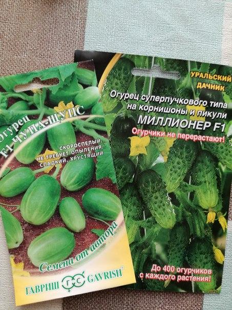 Сегодня купила вот такие семена огурчиков. В поисковике...
