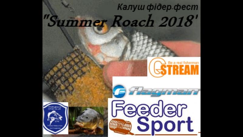 Калуш фідер-фест Summer Roach 2018