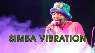 Simba Vibration @ Сердце (СПб) 6-02-2019