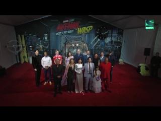 Sony Movie News - Человек-муравей и Оса