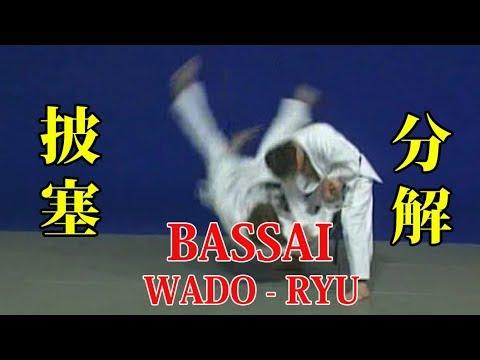 WADO - RYU kata BASSAI Bunkai 和道流 形 分解 (披塞)