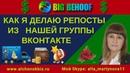 BigBehoof Мой очередной отчет по выводу средств и Как я делаю репосты из нашей группы ВКонтакте