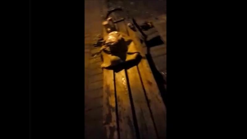 Верка-транс бухая ночью в парке кадрит 12.08.2018